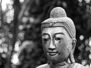buddha lifeoftwo