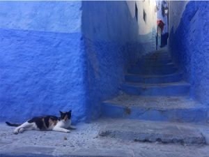 the legend of chefchaouen life of two